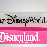 Two wristbands in a stack. Top silicone band is translucent with script that reads Walt Disney World in black print. Bottom silicone band is pink and reads Disneyland Resort in white print.