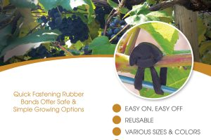 Outdoor Rubber Tab Bands Flyer